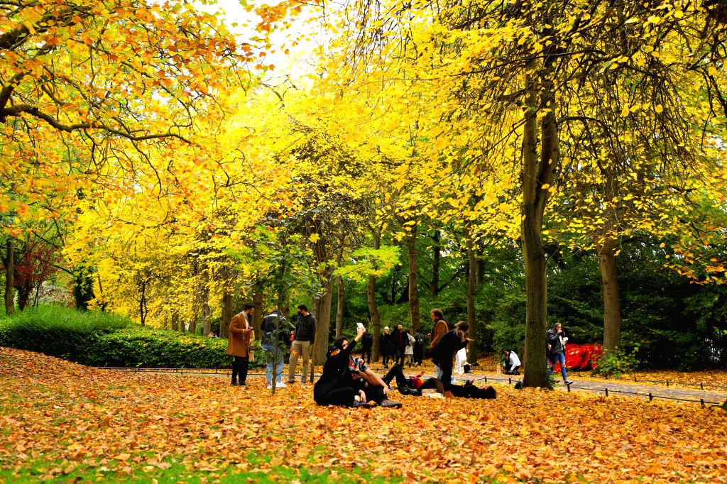 People enjoy autumn scenery in Dublin, Ireland, on Oct. 18, 2020.