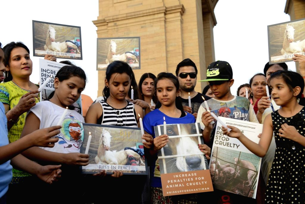 People participate in a candlelight vigil to condemn death of  Shaktimaan, a state police horse at India Gate in New Delhi, on April 21, 2016.