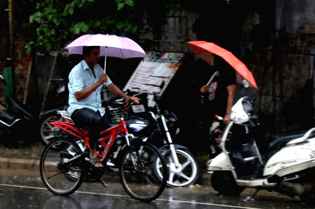 People shield themselves with uymbrellas during rains in Chennai, on Aug 30, 2019.