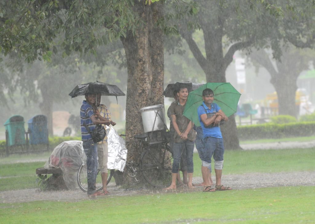 People stand under a tree during heavy rains in New Delhi on Sept 11, 2014.