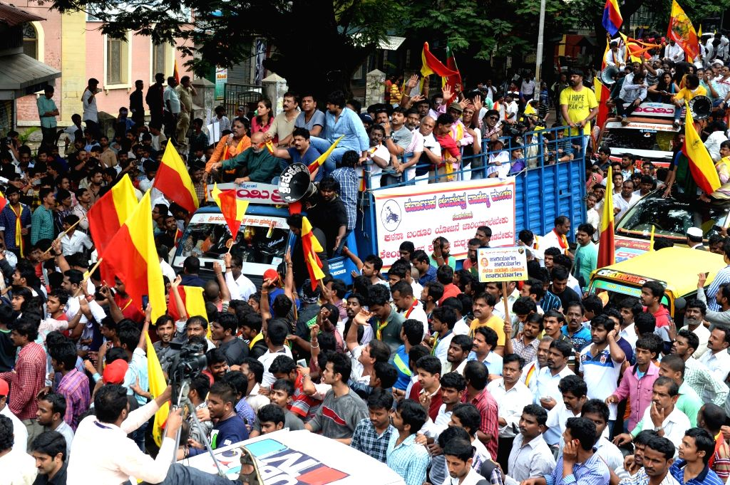People take part in a rally following the Pro-Kannada organisations and Farmers Associations called for a Karnataka bandh condemning the Mahadayi Water dispute tribunal order in Bengaluru ...