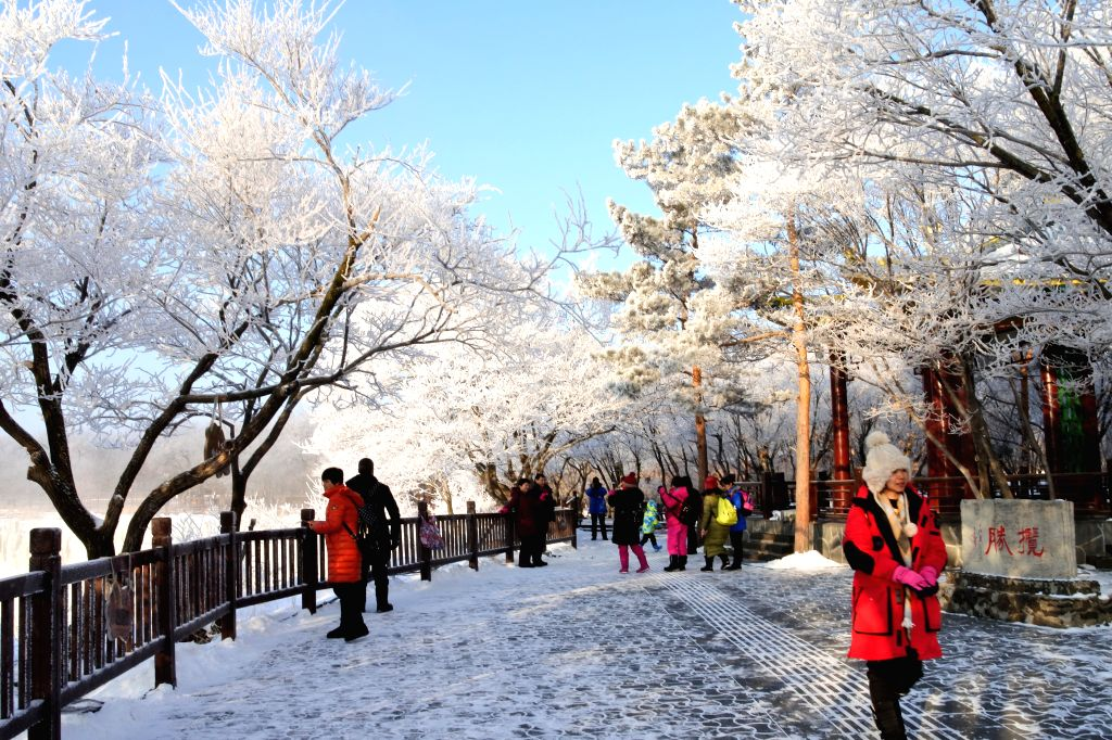 People tour the Jingpohu Global Geopark to enjoy the scenery of rime-covered trees in Mudanjiang, northeast China's Heilongjiang Province, Jan. 11, 2020.