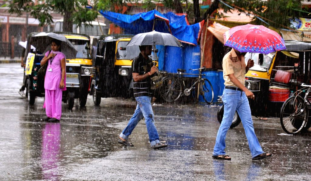People use umbrellas to shield themselves from rains in Jaipur on July 3, 2014.