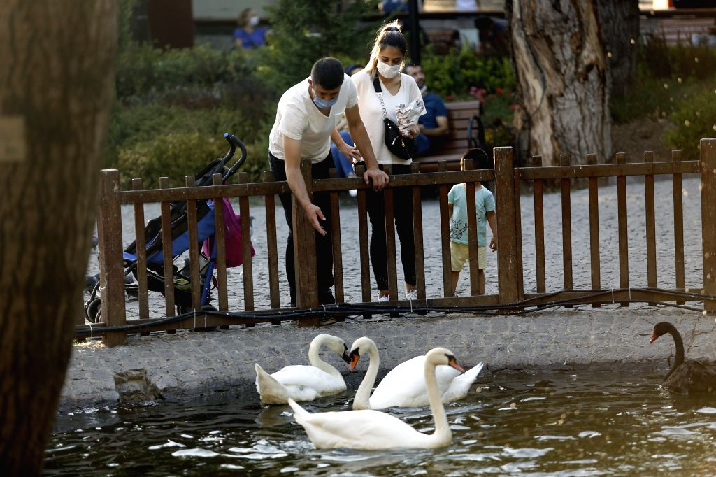 People wearing face masks feed swans in a park in Ankara, Turkey, on Aug. 28, 2020. Turkey confirmed 1,517 new COVID-19 cases on Friday, raising the total diagnosed ... - Fahrettin Koca