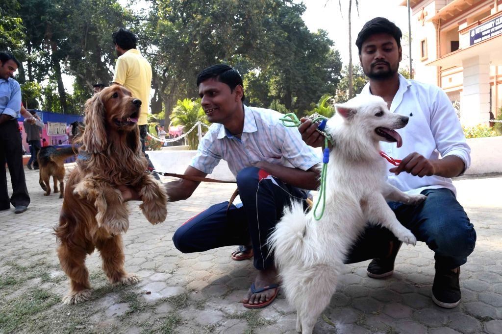 People with their pets during a dog show in Patna on March 2, 2019.
