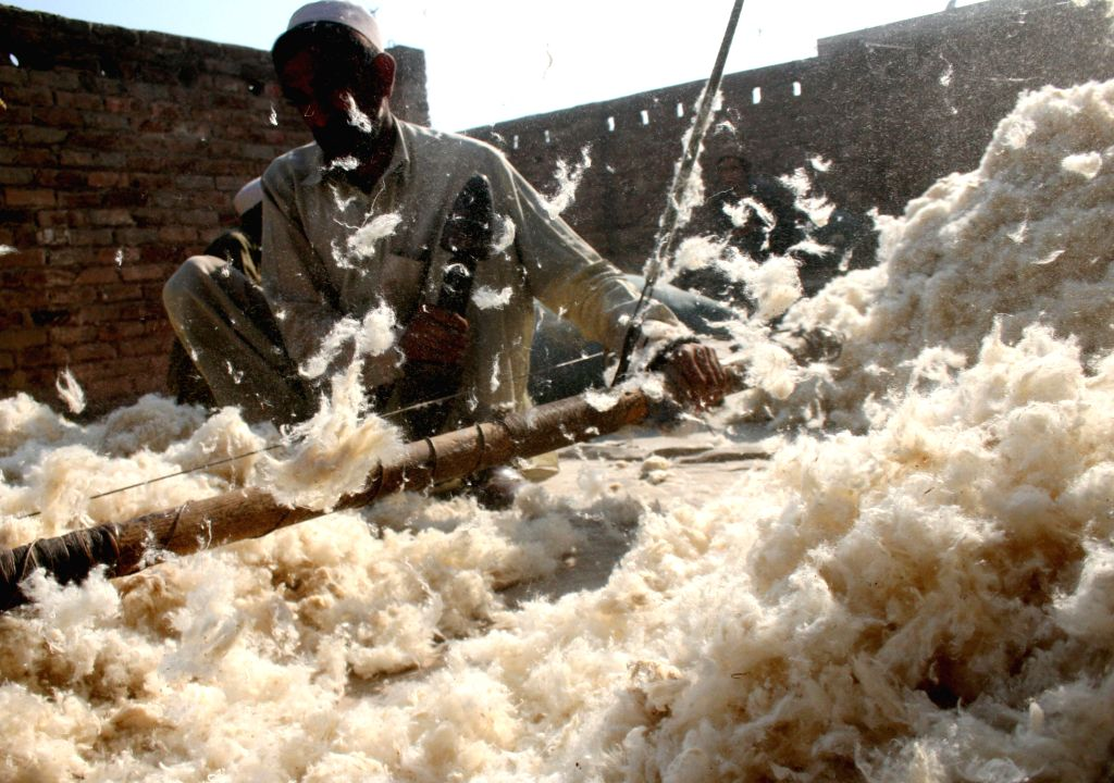 A Pakistani worker prepares cotton for handmade quilts and blankets at a factory in northwest Pakistan's Peshawar on Nov. 24, 2014.