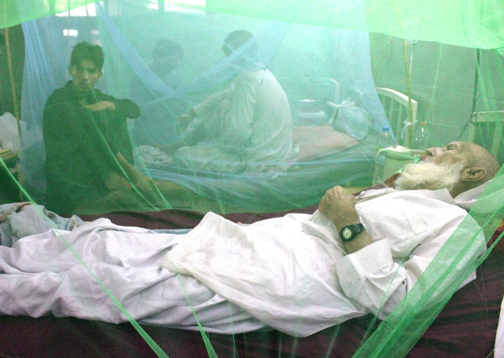 PESHAWAR, Aug. 20, 2017 - A patient affected with dengue fever rests inside a mosquito net at a hospital in northwest Pakistan's Peshawar, Aug. 20, 2017. More than 900 people in Peshawar have been ...