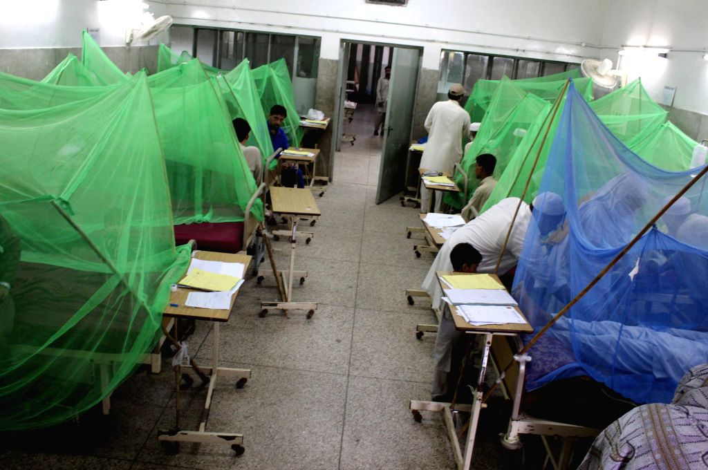 PESHAWAR, Aug. 20, 2017 (Xinhua) -- Patients affected with dengue fever receive medical treatment inside mosquito nets at a hospital in northwest Pakistan's Peshawar, Aug. 20, 2017. More than 900 people in Peshawar have been diagnosed with dengue fev