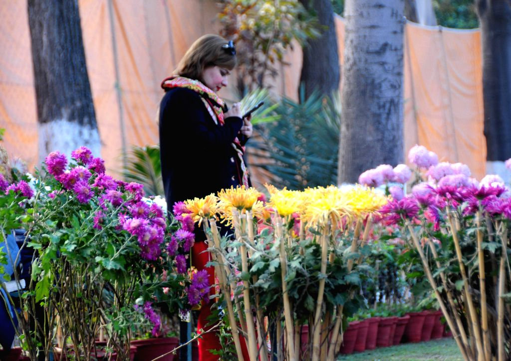 PESHAWAR, Dec. 11, 2019 - A woman visits a chrysanthemum flower show in northwest Pakistan's Peshawar on Dec. 11, 2019.