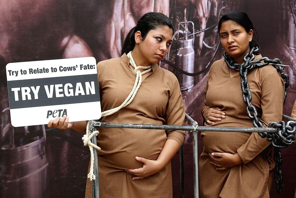 PETA activists urge people to go vegan in Bengaluru on May 12, 2017.