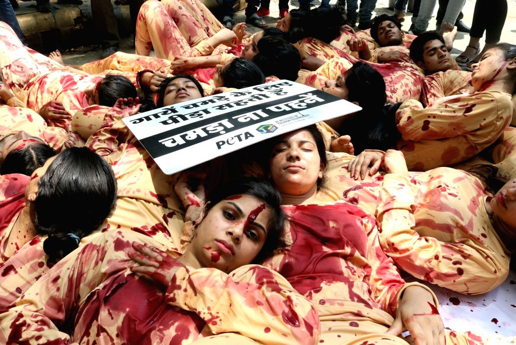 PETA volunteers stage a demonstration to urge people to wear vegan in New Delhi, on May 25, 2017.