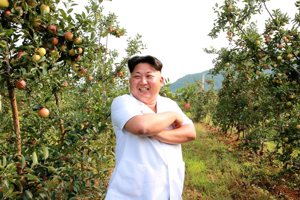 Photo provided by Korean Central News Agency (KCNA) on Aug.18 , 2015 shows top leader of the Democratic People's Republic of Korea (DPRK) Kim Jong Un recently ...