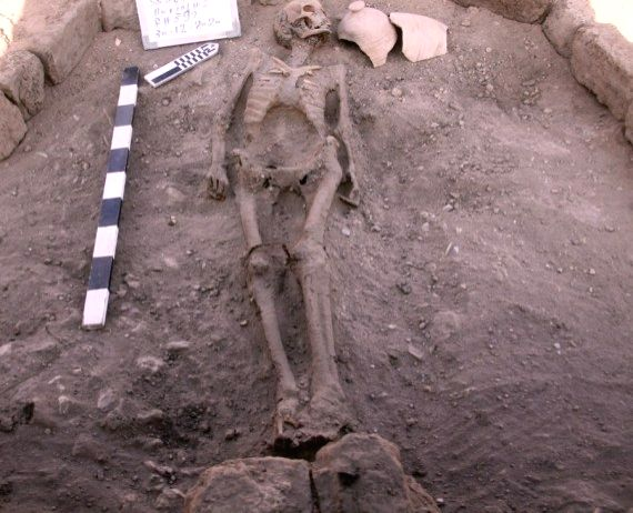 """Photo taken on April 8, 2021 shows an animal skeleton unearthed at the """"Lost Gold City"""" in Luxor, Egypt."""