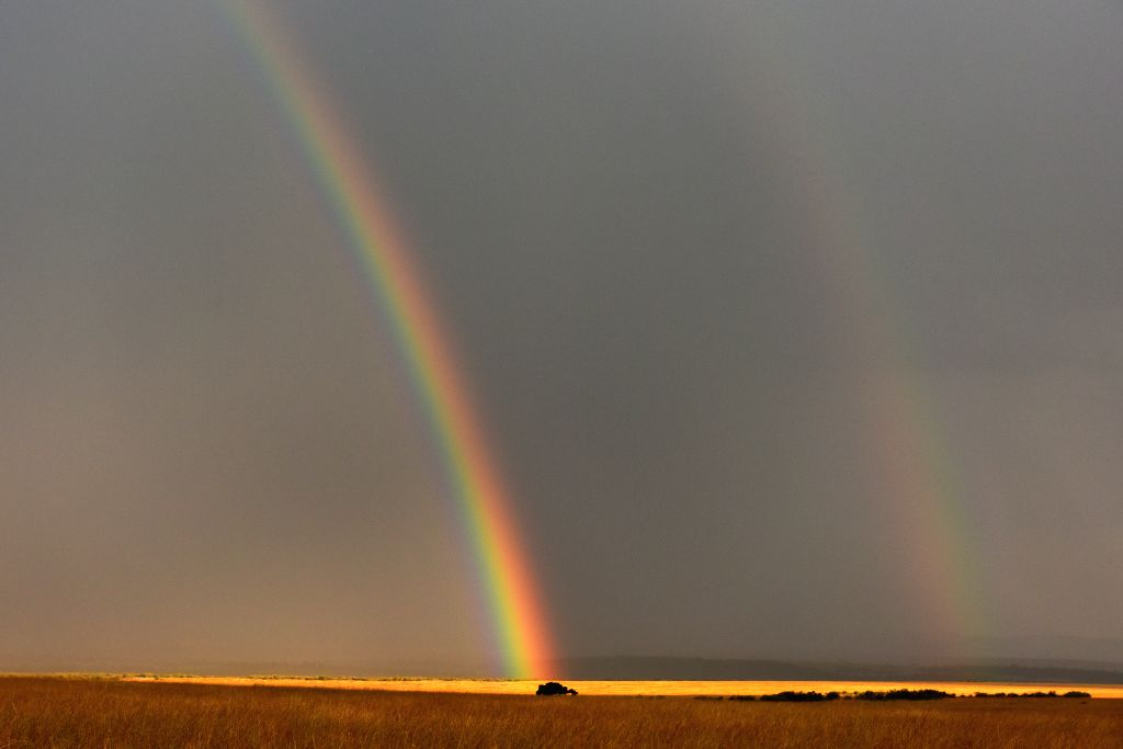 Photo taken on Aug. 15, 2015 shows a rainbow at Masai Mara National Park in Kenya.