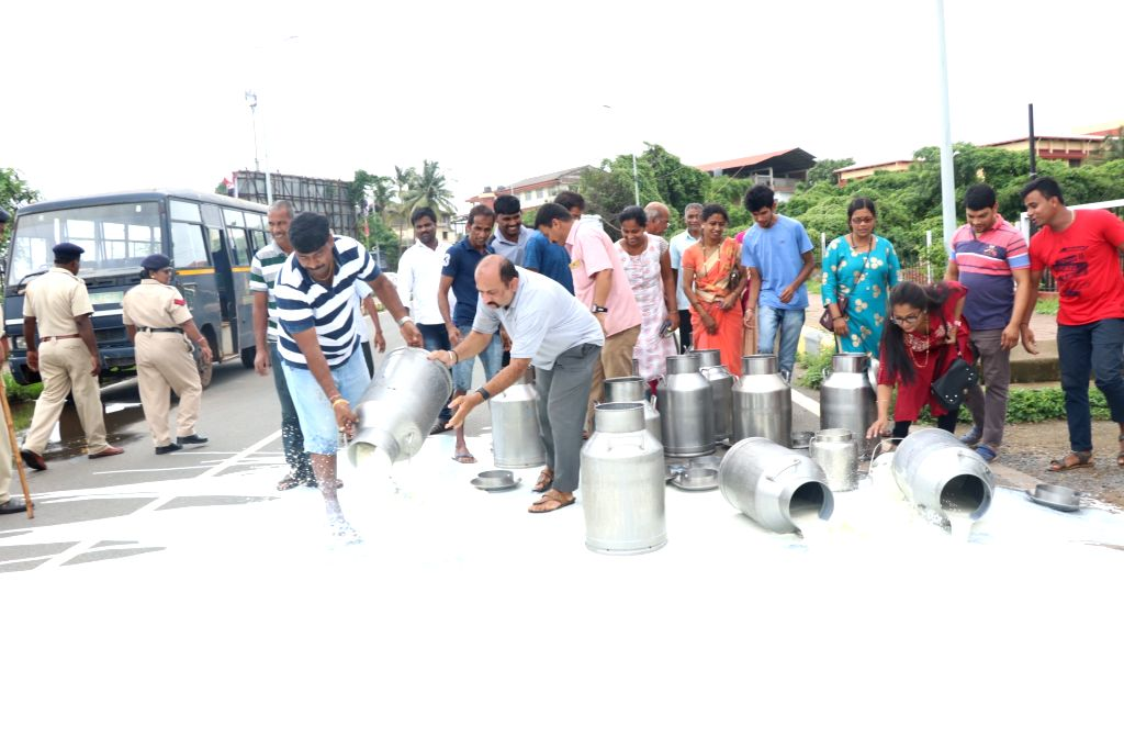 Porvorim: Dairy farmers spill milk on National Highway 66 as they stage a demonstration to press for their various demands, in Goa's Porvorim on July 15, 2019. (Photo: IANS)