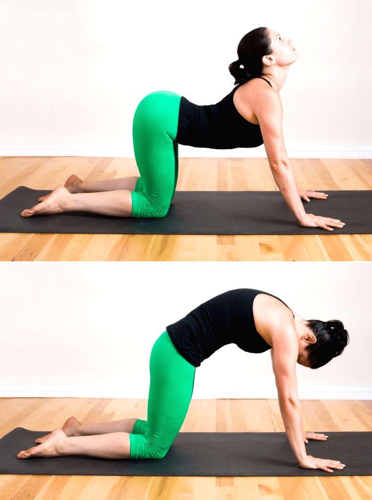 Post-Covid healing yoga asanas.(photo:IANSLIFE)