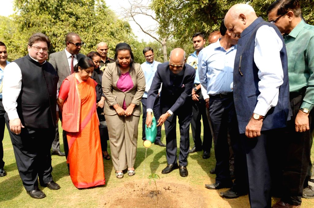 President Ram Nath Kovind along with External Affairs Minister Sushma Swaraj and MoS External Affairs M J Akbar, waters the sapling of Baobab tree gifted to him by University of ... - Sushma Swaraj and Nath Kovind