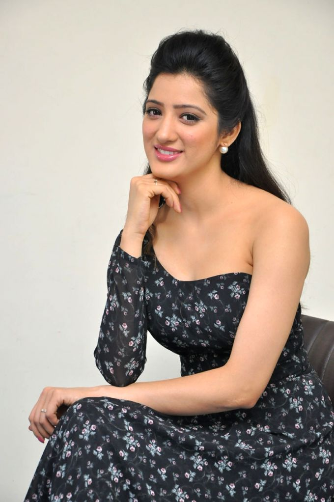 Press meet of actress Richa Panai. - Richa Panai