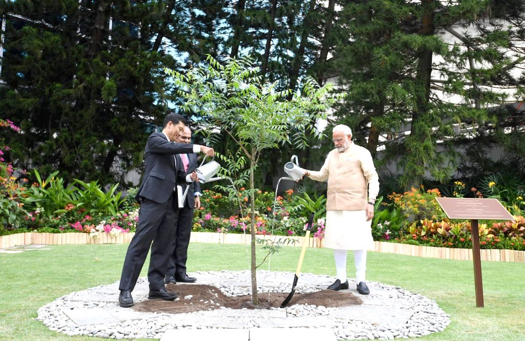 Prime Minister Narendra Modi plants a sapling, during his visit to Nanyang Technological University, in Singapore on June 1, 2018. - Narendra Modi