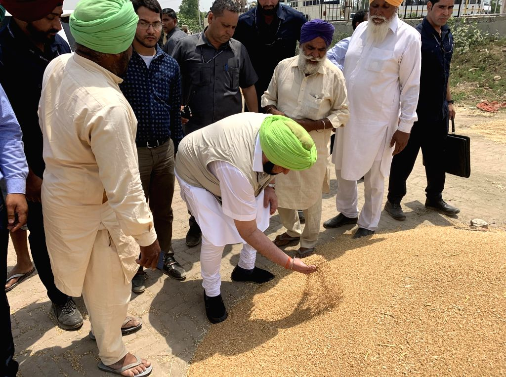 Punjab Chief Minister Captain Amarinder Singh during his visit to a grain market in Punjab's Faridkot, on April 24, 2019. - Captain Amarinder Singh