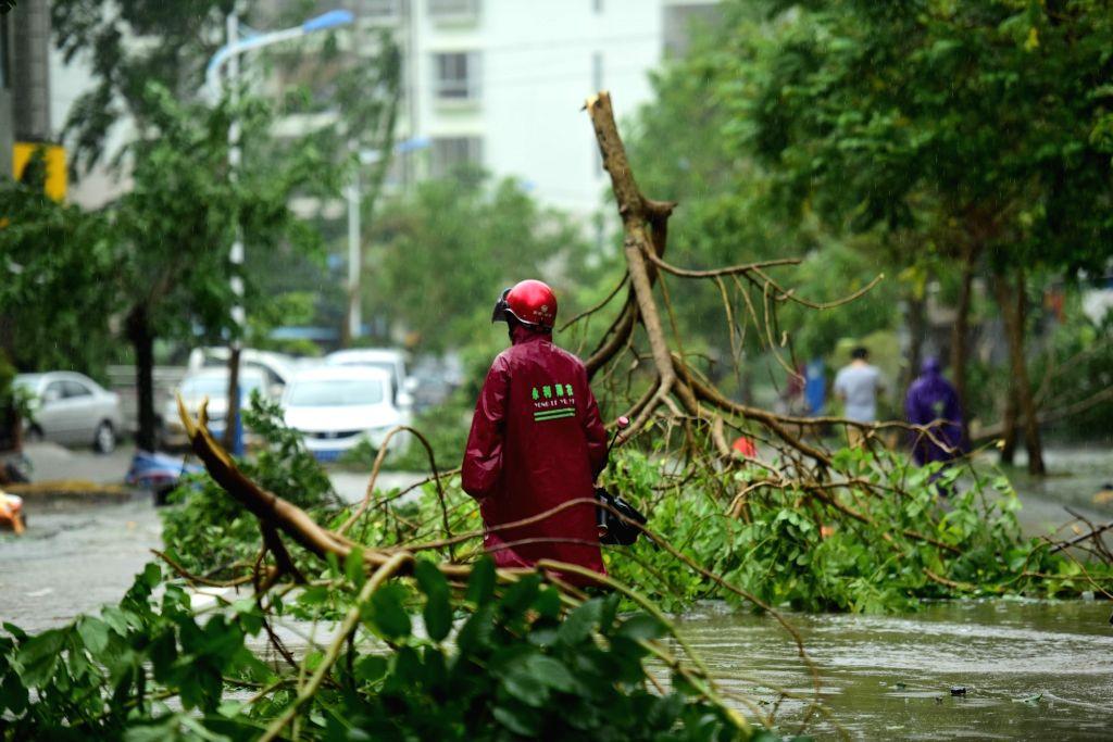 QIONGHAI, Oct. 18, 2016 - Branches are broken in typhoon-hit Qionghai City, south China's Hainan Province, Oct. 18, 2016. Typhoon Sarika, the 21st typhoon of the year, made landfall at Hainan ...