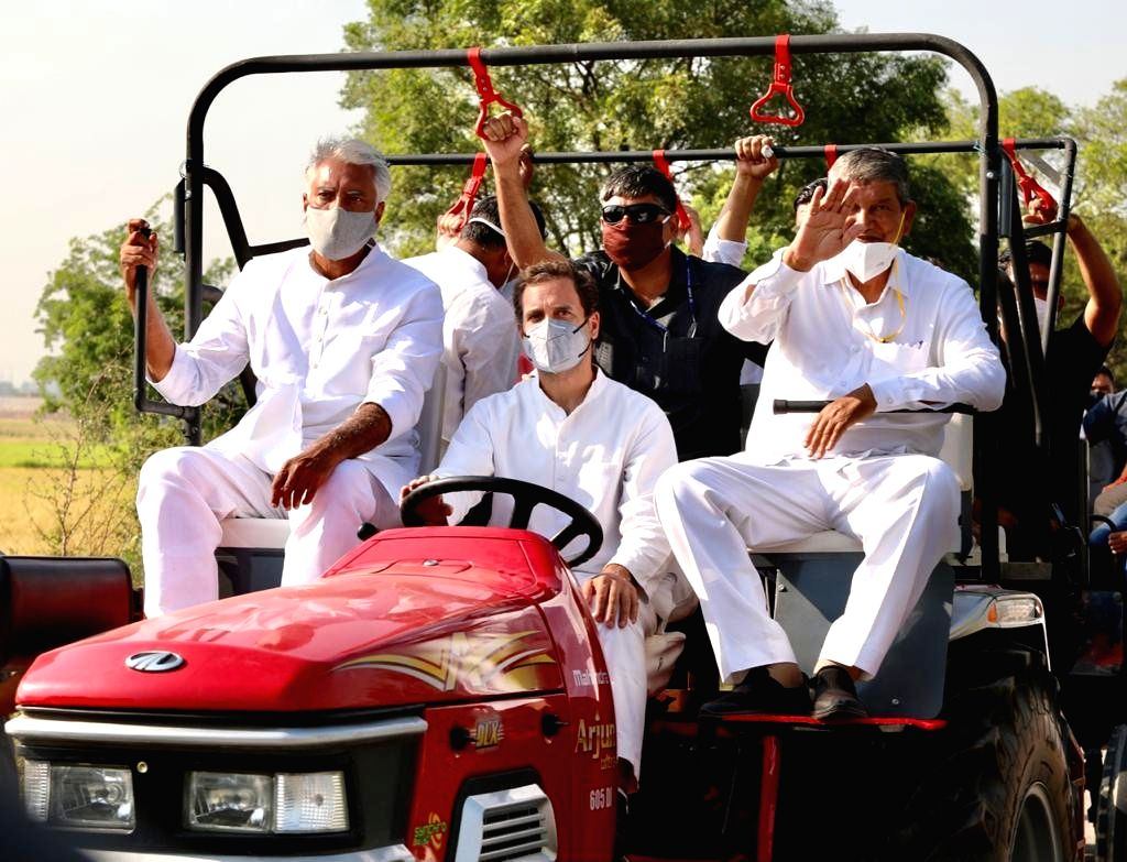 Rahul's tractor rally stopped briefly on Haryana border, later allowed