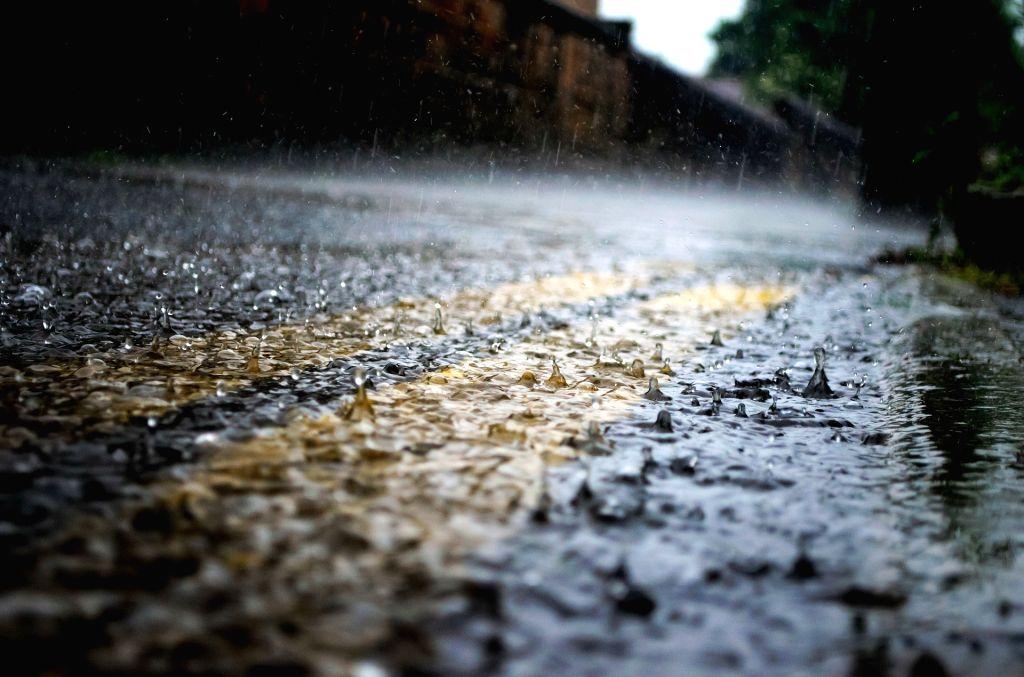 Rain.  (File Photo: IANS)