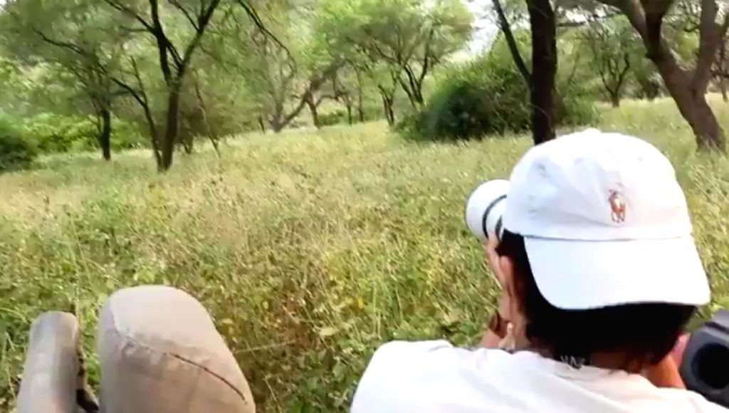 Randeep Hooda's dream of sighting a leopard in the wild comes true.