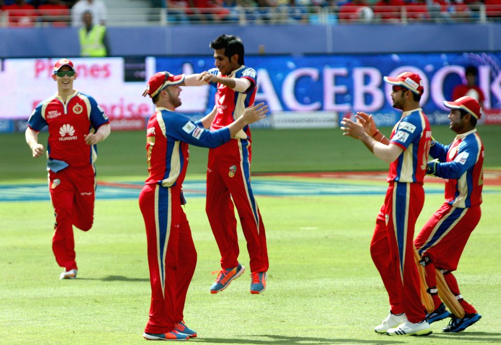 RCB players celebrate fall of a wicket during the fifth match of IPL 2014 between Royal Challengers Bangalore and Mumbai Indians, played at Dubai International Cricket Stadium in Dubai of United Arab