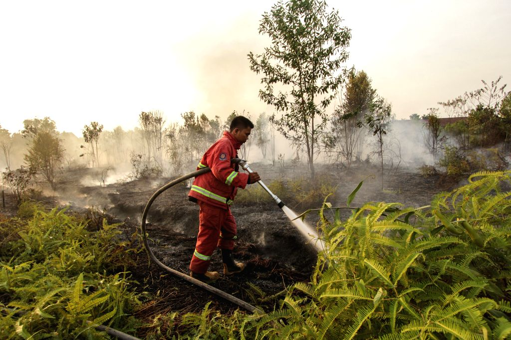 RIAU, Aug. 13, 2019 - A firefighter tries to extinguish fire at Tarai Bangun village in Kampar, Riau Province, Indonesia, Aug. 13, 2019. Indonesia's five provinces in Sumatra and Kalimantan have ...