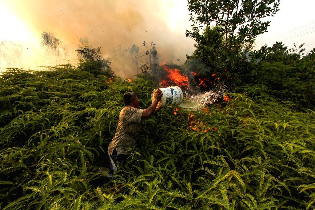 RIAU, Aug. 13, 2019 - A man tries to extinguish fire at Tarai Bangun village in Kampar, Riau Province, Indonesia, Aug. 13, 2019. Indonesia's five provinces in Sumatra and Kalimantan have declared ...