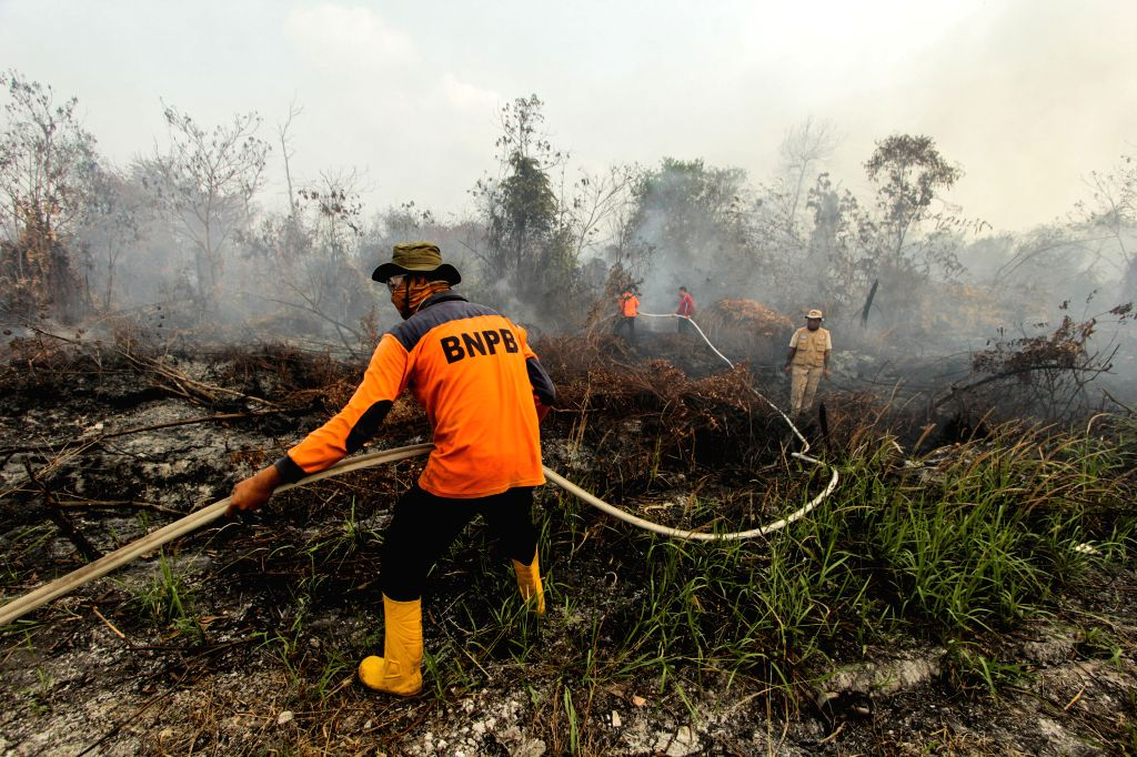 RIAU, Aug. 14, 2019 - Firefighters try to extinguish fire in Kampar, Riau Province, Indonesia, Aug. 14, 2019. Indonesia's five provinces in Sumatra and Kalimantan have declared forest fire status due ...