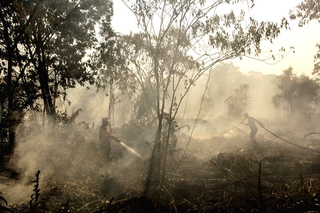 RIAU, Aug. 2, 2019 - Indonesian firefighters from Regional Mitigation Disaster Management Agency of Pekanbaru try to extinguish peatland fire at Pekanbaru, Riau, Indonesia, Aug. 2, 2019. The ...