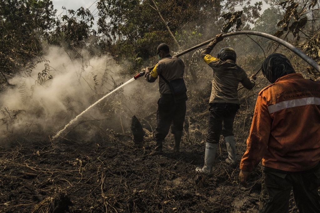RIAU, Feb. 25, 2019 - Indonesian police officers try to extinguish forest fire at Air Hitam village in Riau, Indonesia, on Feb. 25, 2019. Haze has blanketed parts of Riau, forcing schools to send ...