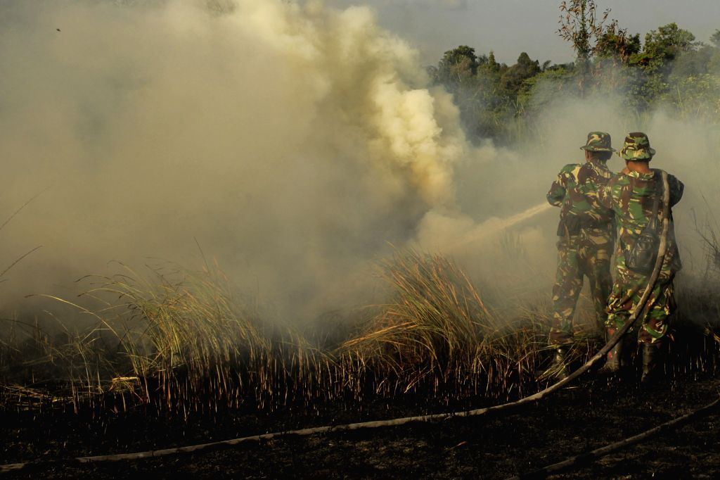 RIAU, July 20, 2019 - Indonesian soldiers try to extinguish peatland fire at Payung Sekaki, Pekanbaru, Riau, Indonesia, July 20, 2019. A joint team from local firefighters, police and military ...