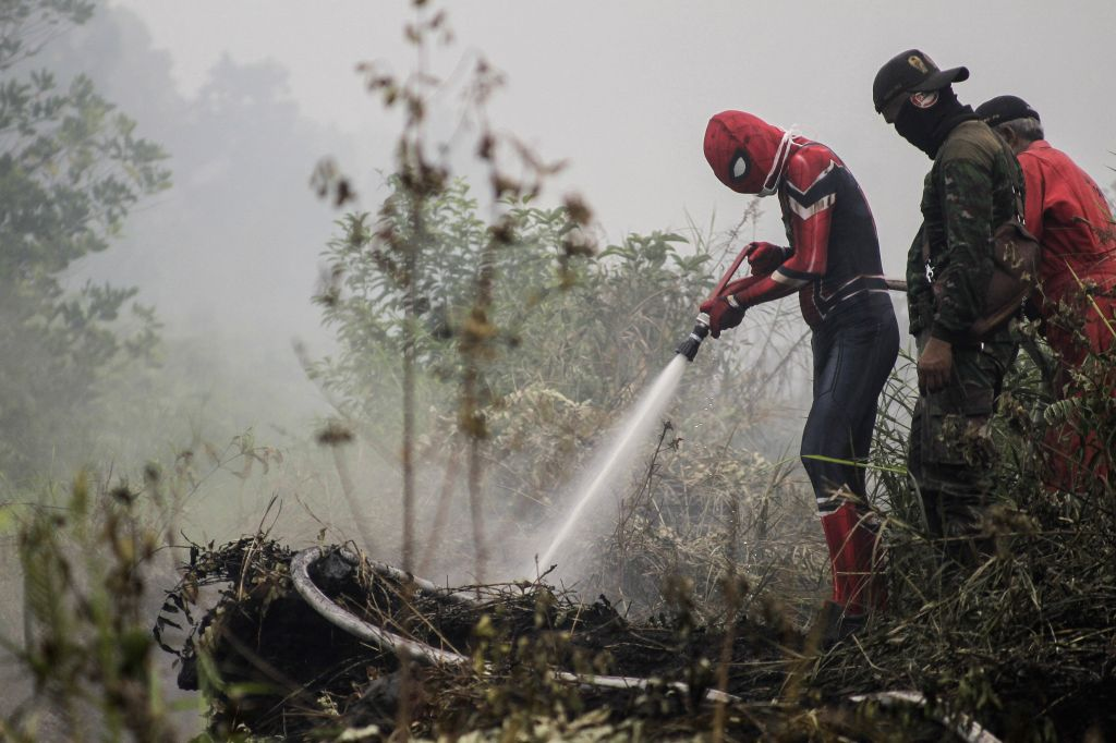 RIAU, Sept. 13, 2019 - A man wearing Spiderman's costume tries to help firefighters extinguish peatland fire at Kampar, Riau, Indonesia, Sept. 12, 2019.