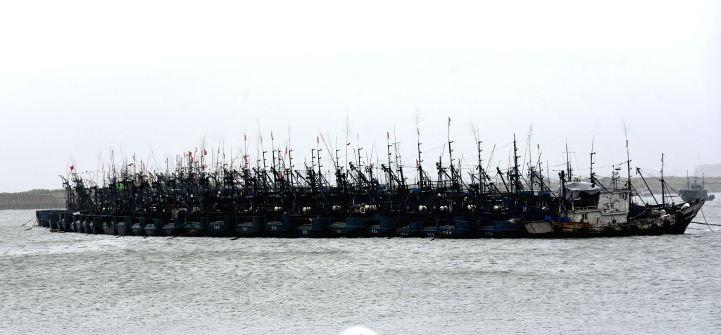 RIZHAO, Aug. 11, 2019 - Photo taken on Aug. 11, 2019 shows ships berthed at Huanghai center harbor in Rizhao, east China's Shandong Province. All ships in Huanghai center harbor have been recalled to ...