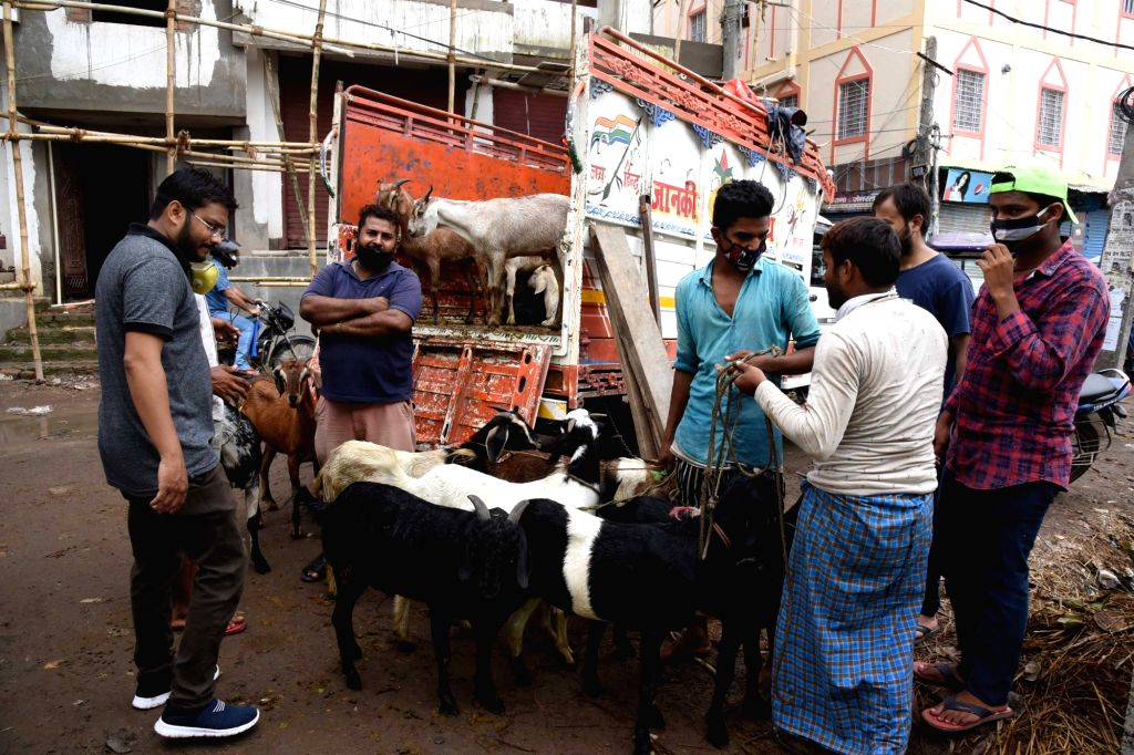 Sacrificial goats on sale at a livestock market ahead of Eid-Ul-Adha celebrations, in Patna on July 30, 2020.