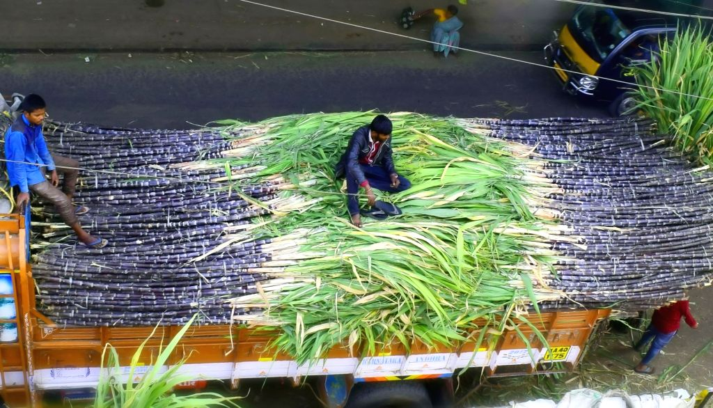 Saharanpur farmer wins award for highest sugarcane yield in UP