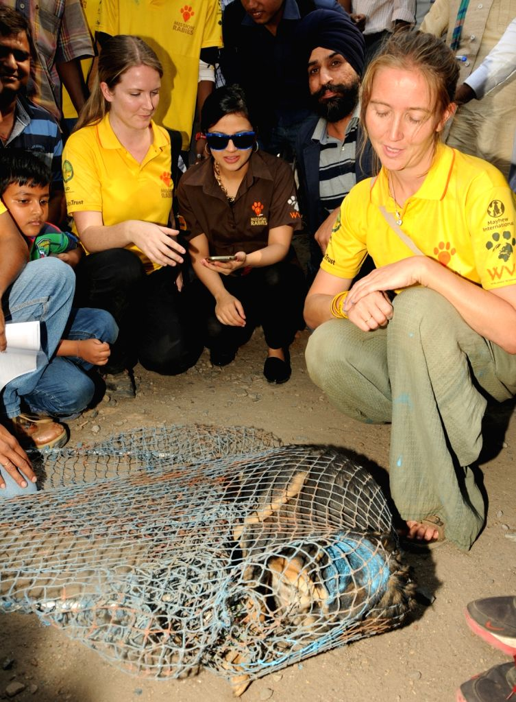 Sakshi Dhoni wife of Indian cricketer MS Dhoni take part in a Mission Anti Rabies programme organised by Animal Husbandry department of Jharkhand State in Ranchi on Nov. 13, 2015. - MS Dhoni