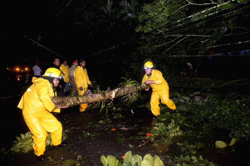 SAN CARLOS, Nov. 25, 2016 - Firefighters move a fallen tree after a storm in San Carlos, Nicaragua, on Nov. 24, 2016. Hurricane Otto has increased its strength to Category 2, with winds reaching up ...