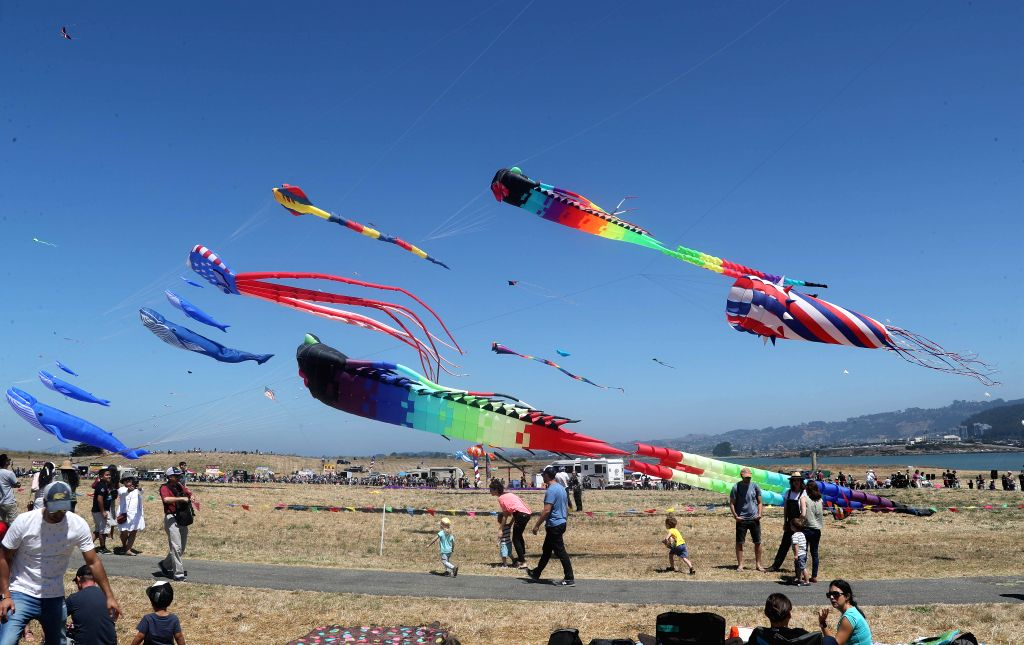 SAN FRANCISCO, July 28, 2019 - People fly kites during the 34th Berkeley Kite Festival in Berkeley, California, the United States, July 27, 2019. (Photo by Dong Xudong/Xinhua/IANS