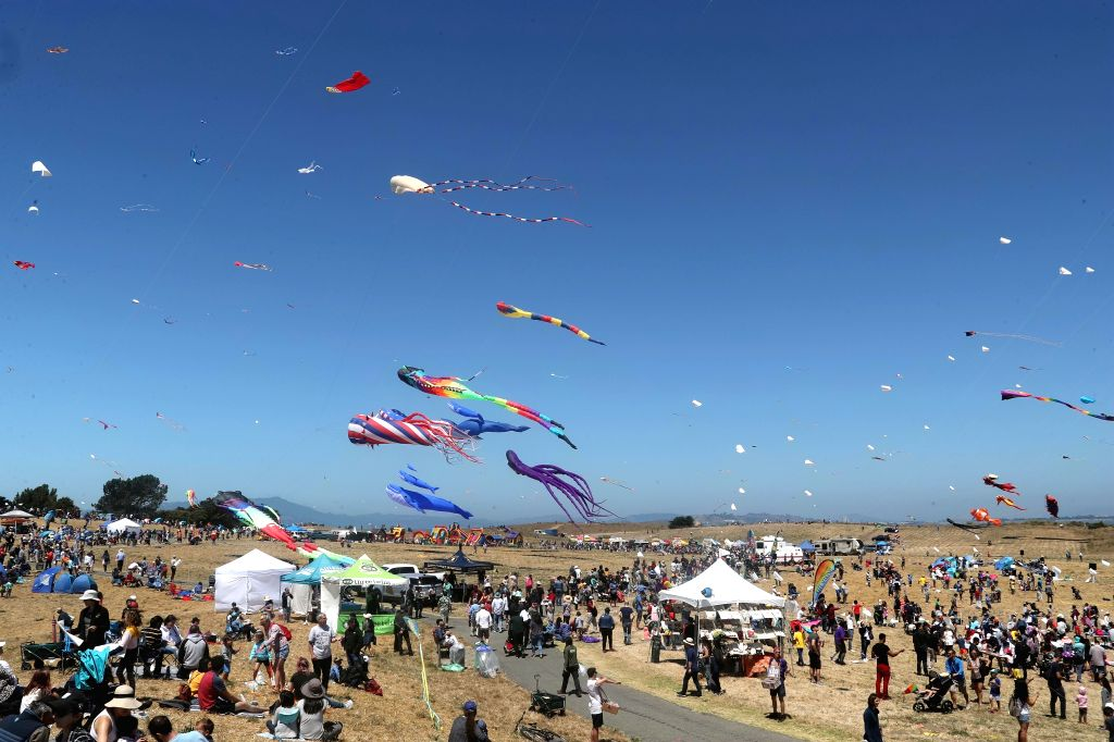SAN FRANCISCO, July 28, 2019 - People fly kites during the 34th Berkeley Kite Festival in Berkeley, California, the United States, July 27, 2019. (Photo by Dong Xudong/Xinhu/IANS