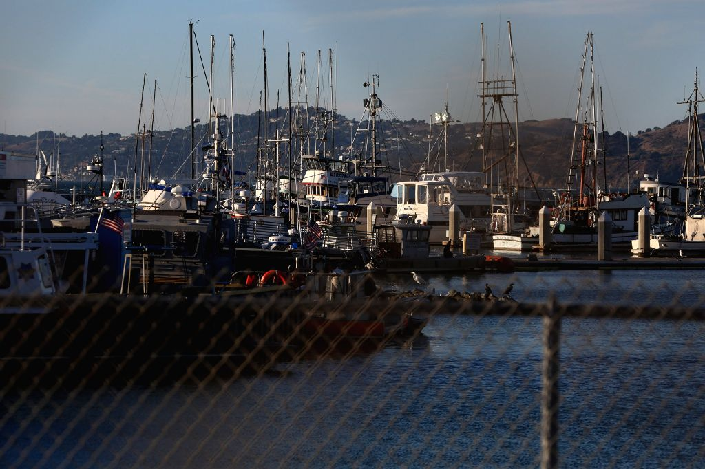 SAN FRANCISCO, Oct. 9, 2016 - Photo taken on Oct. 8, 2016 shows the water area where an accident happened in San Francisco, the United States. A boat carrying dozens of kids capsized in San Francisco ...