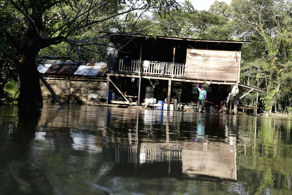 SAN JOSE, Nov. 26, 2016 - A man looks out from his house in Upala of Alajuela, Costa Rica, Nov. 25, 2016. The government of Costa Rica confirmed Friday that Hurricane Otto had killed at least nine ...