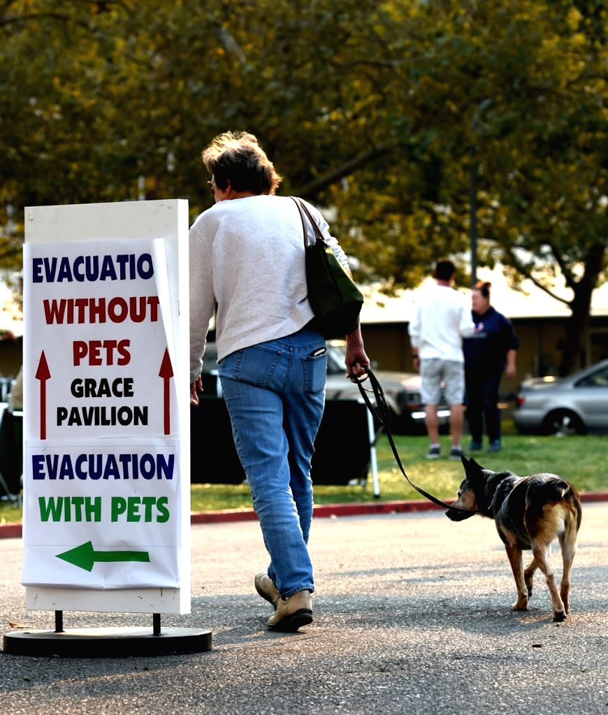 SANTA ROSA (U.S.), Oct. 12, 2017 A woman with her dog walks at a temporary settlement in Santa Rosa, California, the United States, on Oct. 11, 2017. California Governor Jerry Brown ...