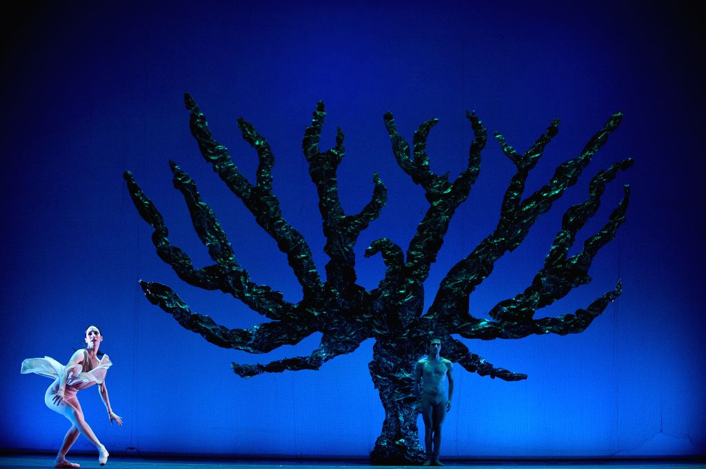 "Members of Santiago's Ballet perform the choreography ""Ellphlox, the spirit of the forest"", during the general rehearsal of Choreographers Festival, in .."