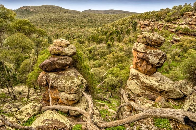 Scenic views across Cocoparra National Park, within a half-hour drive of Griffith.