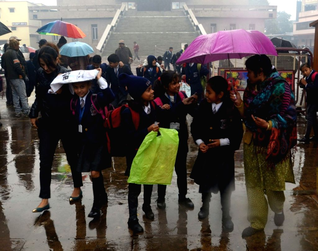 School students use umbrellas to protect themselves from winter rains in Lucknow, on Jan 19, 2016.