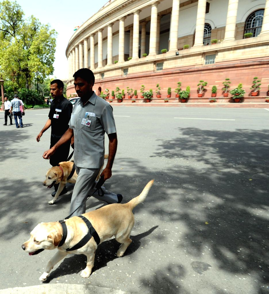 Security personnel take sniffer dogs to inspect the documents pertaining to General Budget 2014-15 for explosives before they are taken inside the Parliament in New Delhi on July 10, 2014.